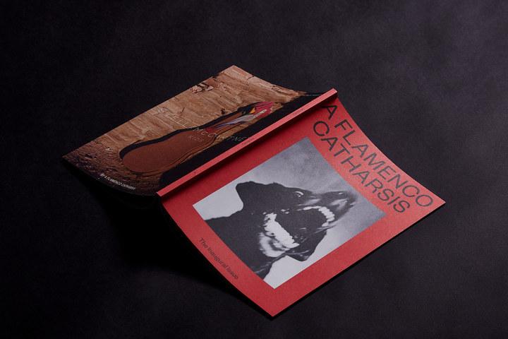 A flamenco catharsis 14